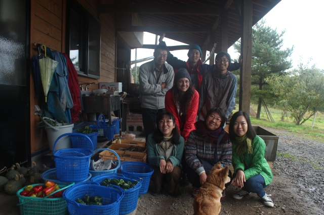 Shiratori Farm, with Junko-san and Kat-san, and their four WWOOFers. They let me stay to help harvest vegetables for a day, and perhaps unknowingly, planted a seed of curiosity in me about farming, farm policy, and food wellness.
