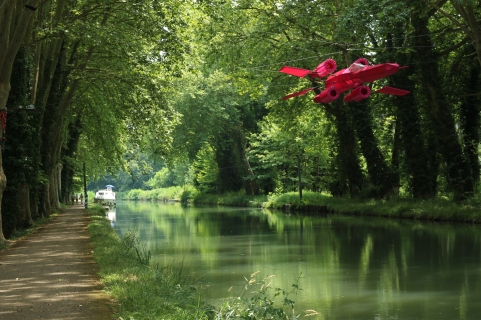 Walk or hike along the Canal du Midi from the Atlantic to the Meditteranean.